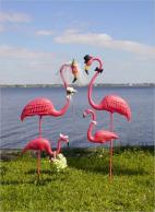 4 flamingos