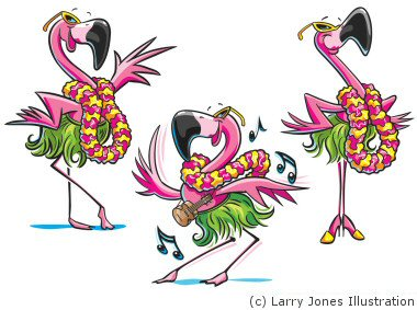 3-flamingos-dancing